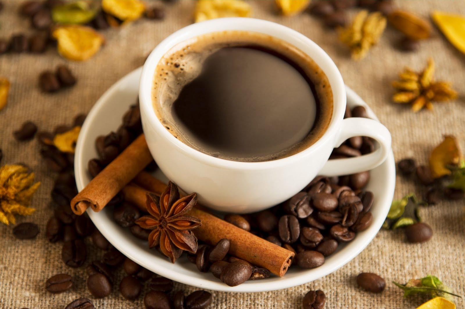 Por que os Mórmons não bebem café?