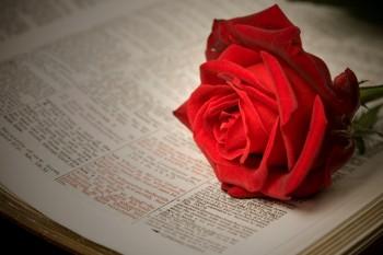 Os 16 Versos Mais Românticos das Escrituras