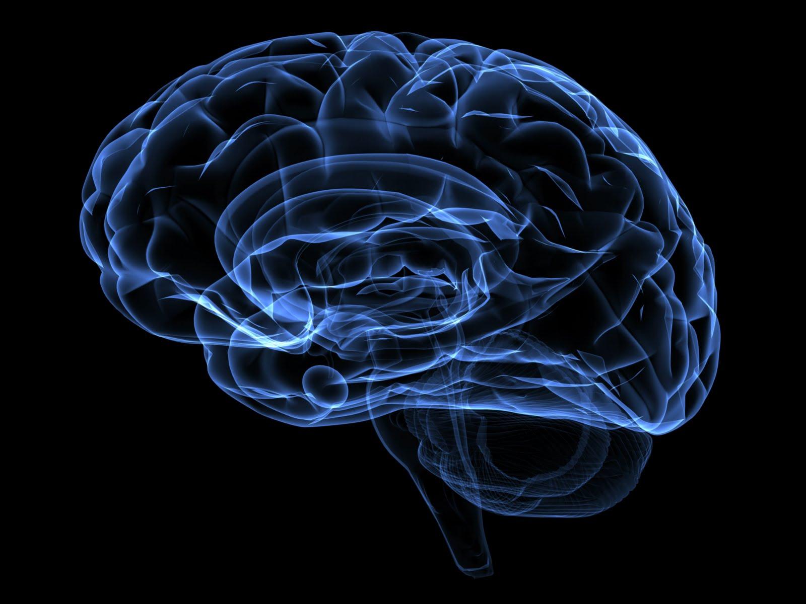 Os Mórmons fazem Lavagem Cerebral?