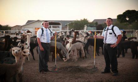 O que todo missionário Mórmon deve aprender sobre verdadeira liderança