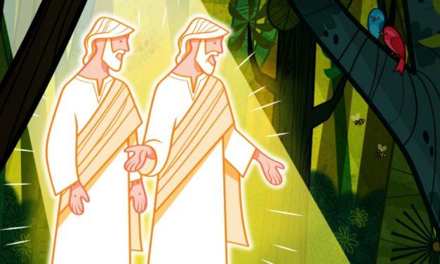 Igreja lança livro de colorir de Pérola de Grande Valor