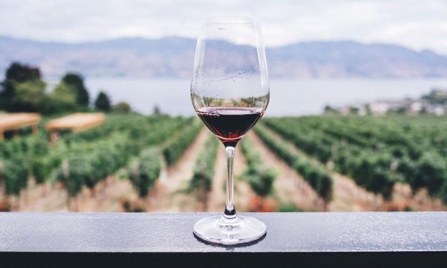 """Nova Descoberta Científica: """"Só Uma Bebida"""" Já é Muito Prejudicial"""