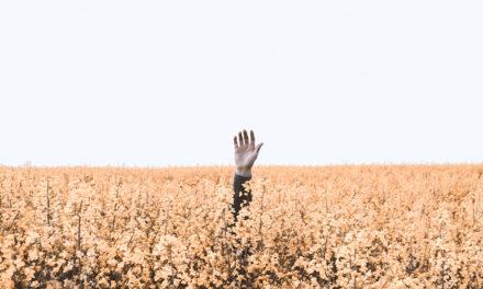 O que fazer quando você sente que está perdendo seu testemunho?