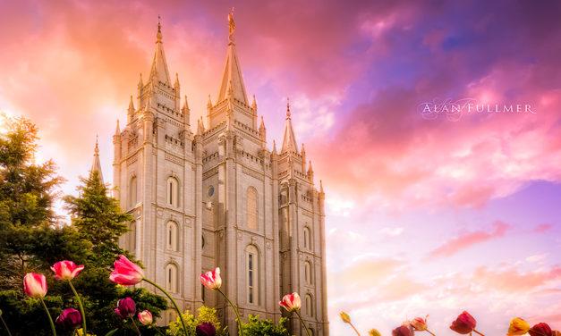 27 fotos lindas de templos durante a primavera