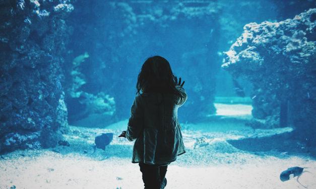 O que as crianças podem lhe ensinar sobre encarar seus medos