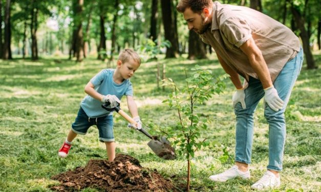 Por que precisamos ensinar as crianças a importância da afirmação 'trabalhe duro e seja bondoso'