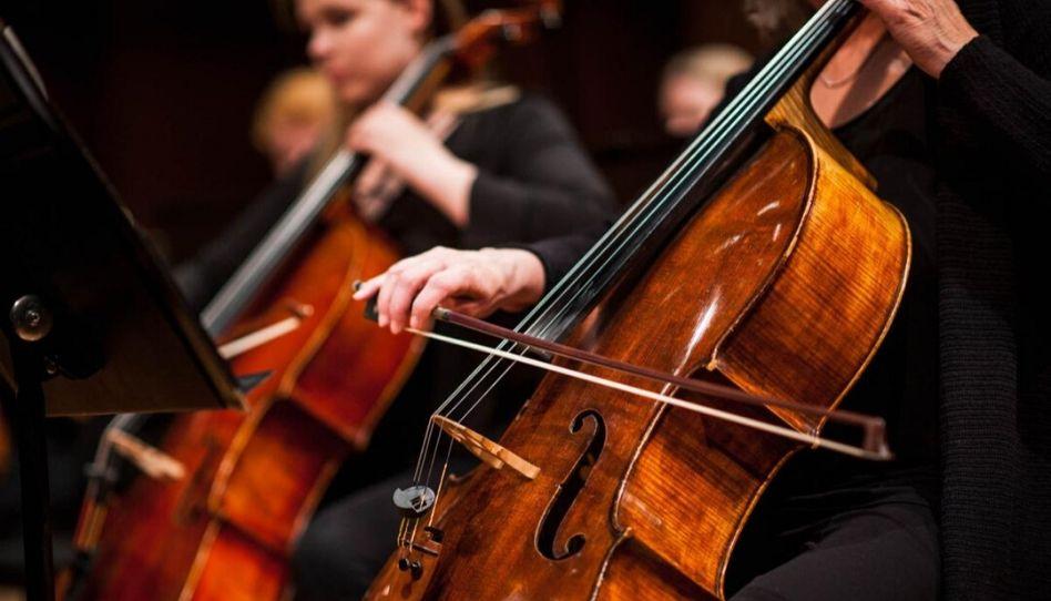 Perguntas e respostas: Poderei tocar meu instrumento musical após a morte?