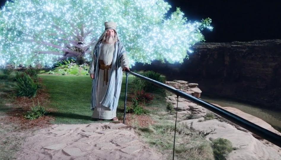 O que aprendemos sobre a mortalidade e a vida eterna com as árvores citadas nas escrituras