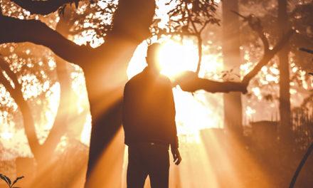5 vezes que anjos ajudaram profetas e apóstolos nos últimos dias