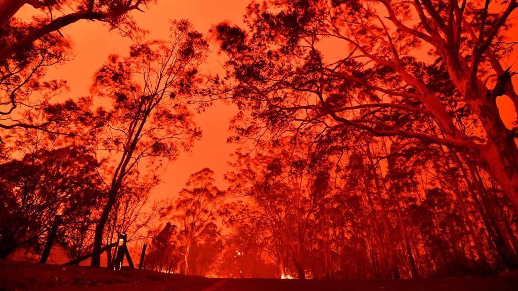 Membros da Igreja de Jesus Cristo jejuam pelas vítimas dos incêndios na Austrália