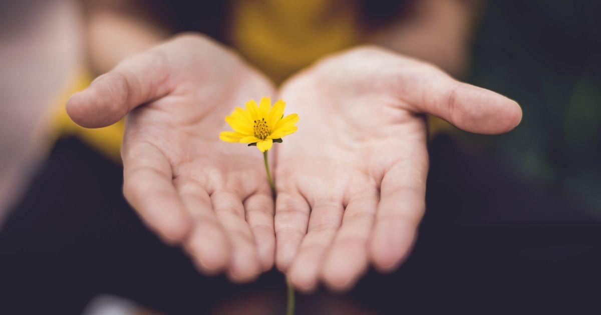 Encontrar paz quando as expectativas não vão de encontro com a realidade