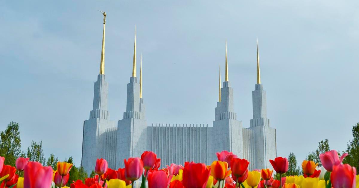 Rededicação do Templo de Washington D.C. é adiada indefinidamente devido à COVID-19